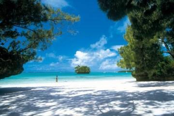 Brevet 2015 Nouvelle Calédonie