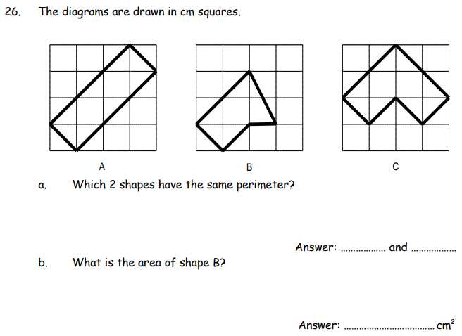Area and Perimeter Questions Collected From 11+ papers