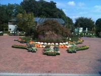 Fall Sale 2012