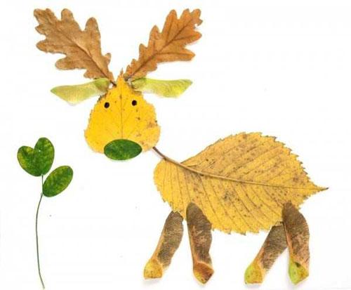 Risultati immagini per immagini foglie autunnali