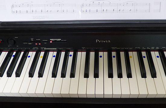鍵盤シール