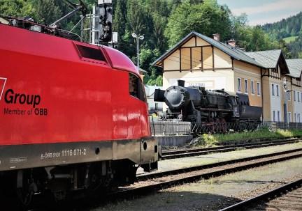 DSC02909 (2)
