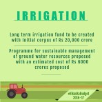 Budget Infographics-18
