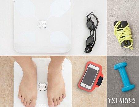 體脂率計算器怎麼計算? 3個技巧幫你完美測量體重 - 色彩地帶