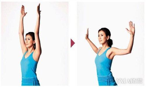 擴胸運動可以豐胸嗎? 自然豐胸的最強方法擴胸運動 - 色彩地帶