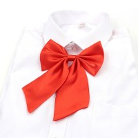 Trendy Chic Men Women Butterfly Neck Tie Shirt Accessories