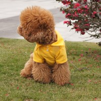 New Pet Doggy Apparel Dog Cool Puppy Cute T-Shirts Clothes ...