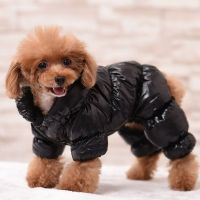 Pet Coat Dog Jacket Winter Warm Clothes Puppy Cats Sweater ...