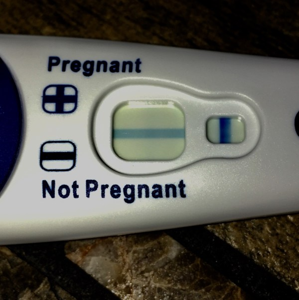 Clear Blue Pregnancy Test Faint Line - Year of Clean Water