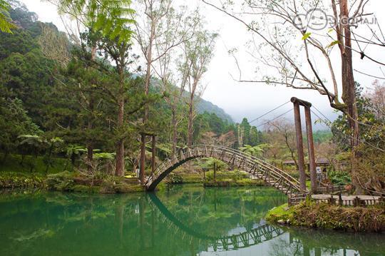 溪頭自然教育園區 - GOMAJI