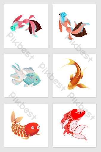 Ikan Hias Png : Ilustrasi, {format}|Gambar, Kartun, Download, Gratis, Pikbest