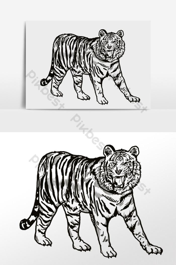 Gambar Harimau Hitam Putih : gambar, harimau, hitam, putih, Gambar, Garis, Ilustrasi, Harimau, Haiwan, Elemen, Grafik, Percuma, Turun, Pikbest