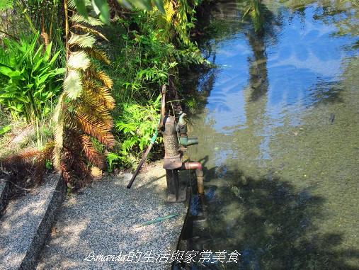 宜蘭-花泉農場-野薑花園-泡冷泉-野薑花粽DIY  花泉農場-冷泉給水器