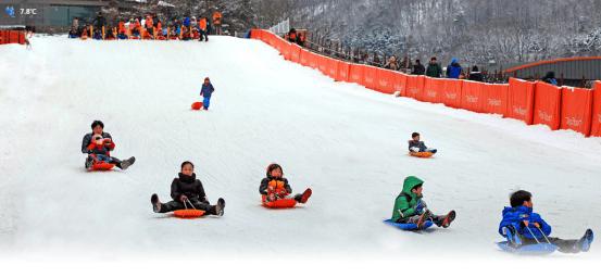 陽智滑雪場 양지파인리조트 스키장