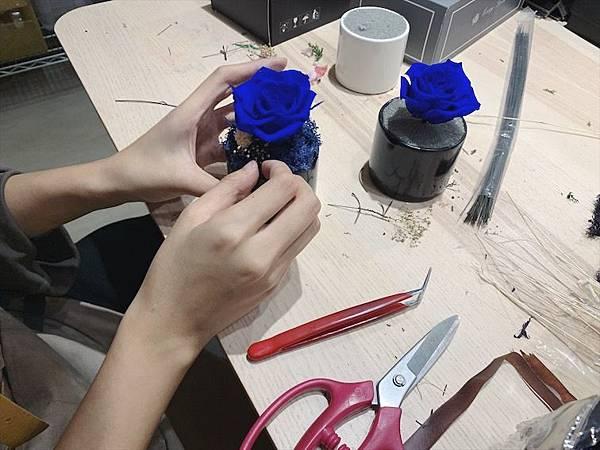 台北質感花店推薦,花藝師正在設計永生花盆栽藍色永生花.JPG