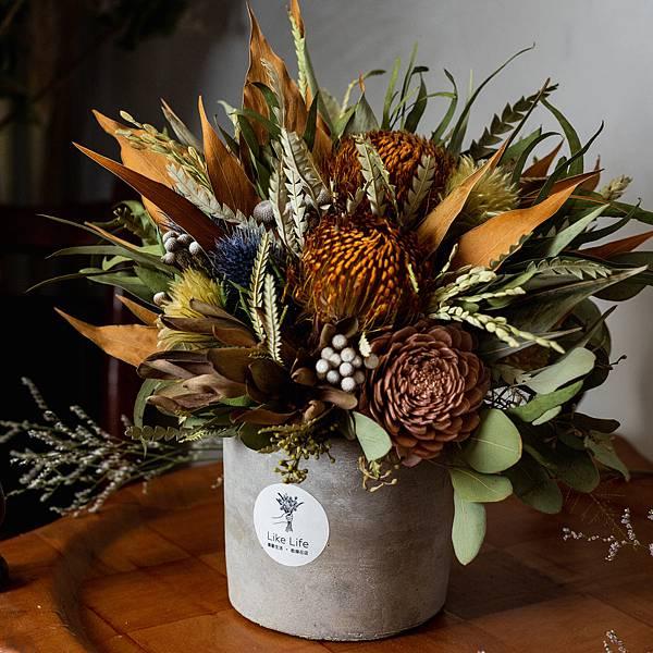 開幕盆栽代客送花,水泥盆器,乾燥花盆栽