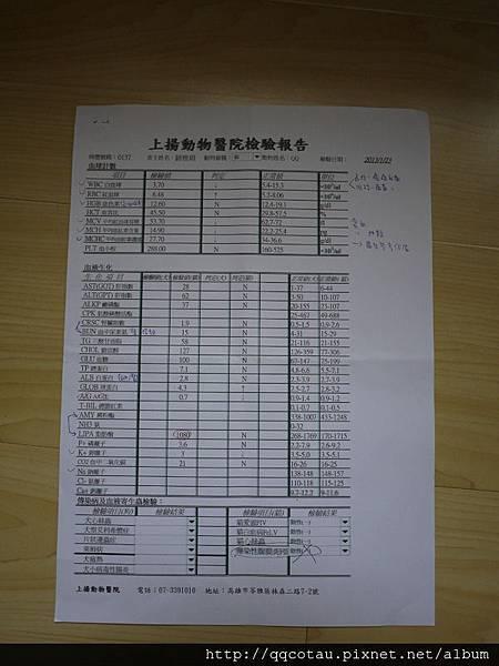【貓咪健康檢查】2013驗血報告 @ QQ姐姐&叩逃弟弟 :: 痞客邦
