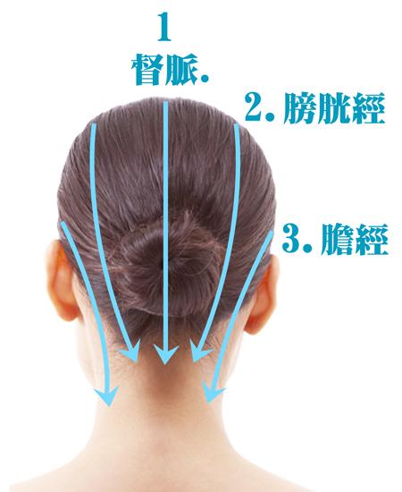 頭部刮痧 督脈 膀胱經 膽經