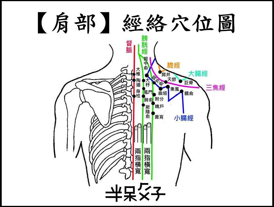 以身體部位劃分:(8)【肩部】穴位 @ 老 玩 童 玩 老 童 玩 :: 痞客邦