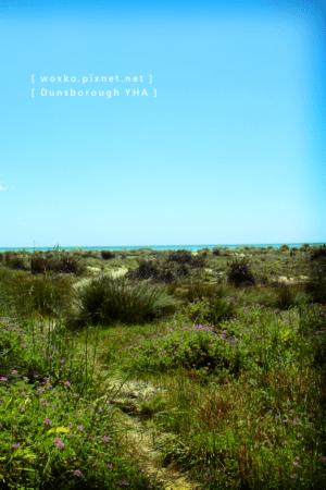 D_YHA-13 [640x480].png