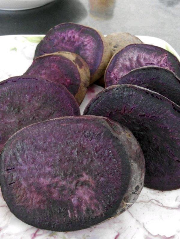 紫薯的功效 常吃紫薯防癌抗癌效果驚人 - 天天健康