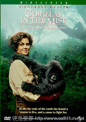 Dian Fossey-3