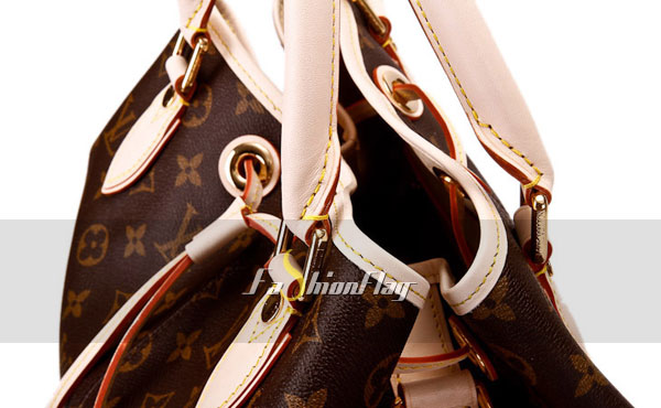 Louis-Vuitton-Monogram-Canvas-Neo-e