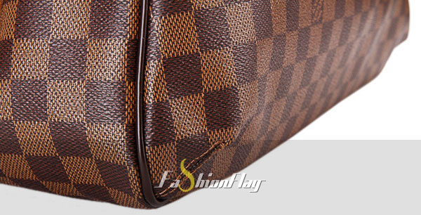 Louis-Vuitton-Damier-Ebene-canvas-Griet-c
