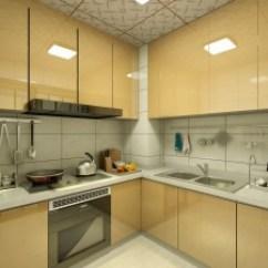 Complete Kitchen Unfinished Cabinet Doors 整齐 完整的厨房收纳 还打造了全屋冷热水回路 软水和净水处理 冬季 厨房 冬季随时可以流出暖水 洗碗洗菜都