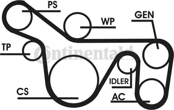 Multiriem (poly v-riem) kit voor de Ford Focus I 1.8 TDCi 115