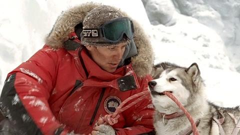 南極大冒險-電影-高清完整版線上看-愛奇藝臺灣站