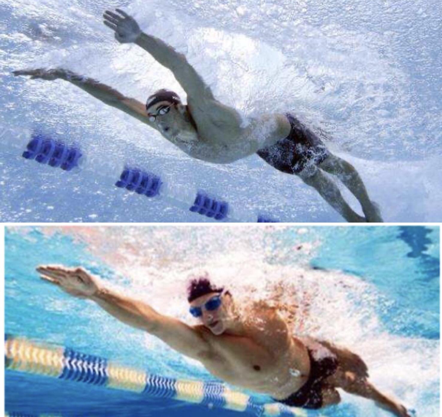 蝶泳劃手是「蛙泳+自由泳」的結合?有怎樣的自由泳劃手就有怎樣的蝶泳劃手 - 知乎