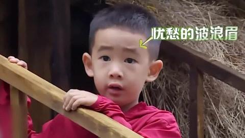 《爸爸去哪兒5》jasper那些秒「慫」瞬間萌炸-綜藝-高清影音線上看–愛奇藝臺灣站