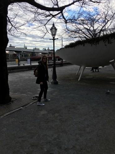 Had to chase a pigeon - Piccione :)