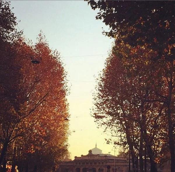 Foliage a Milano