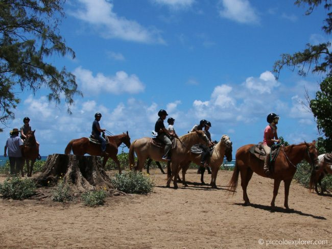 Turtle Bay Resort Horseback Riding Oahu