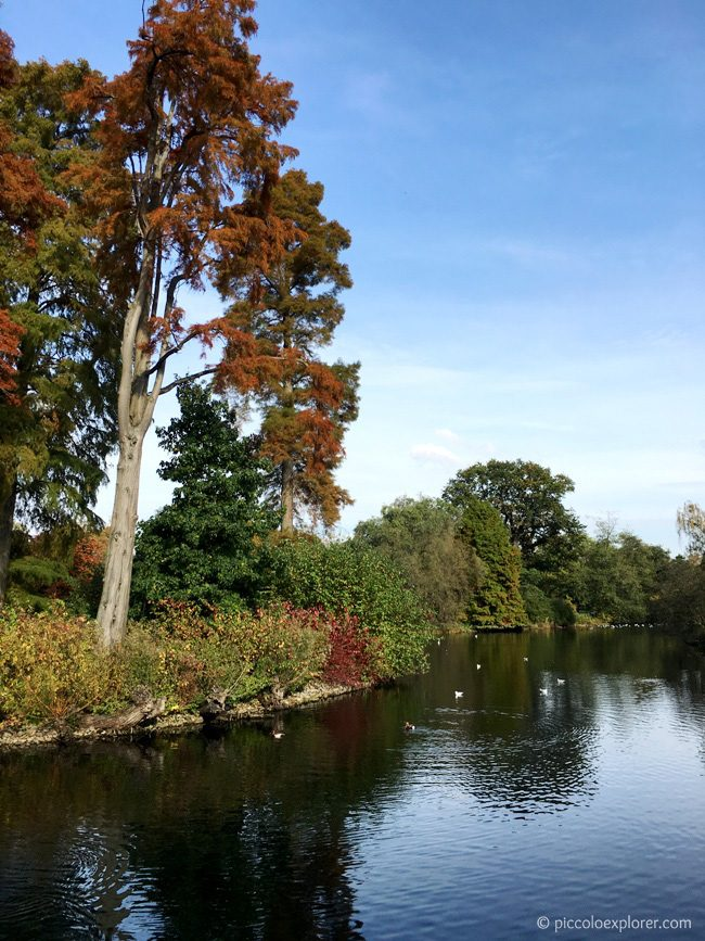 View from Sackler Crossing, Kew Gardens