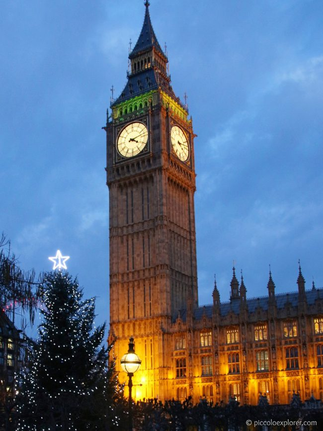 Christmas Tree at Houses of Parliament, Westminster, London