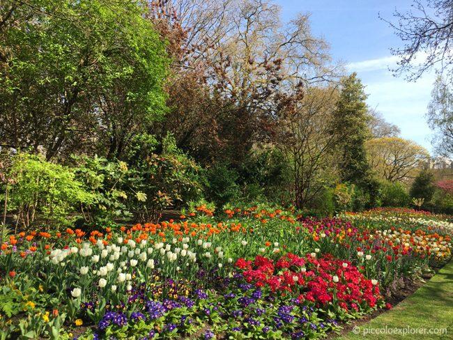 St James's Park, London in Spring