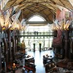 Review: The Animal Kingdom Lodge, Orlando