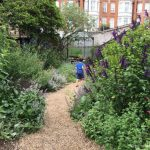Visiting the Chelsea Physic Garden