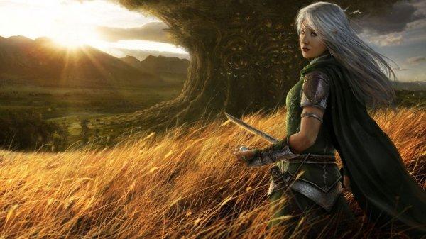 Women Warrior - Id 172565 Abyss