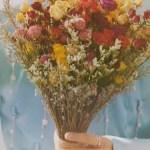 Seungkwan Fallin Flower Mv Image Id 364984 Image Abyss