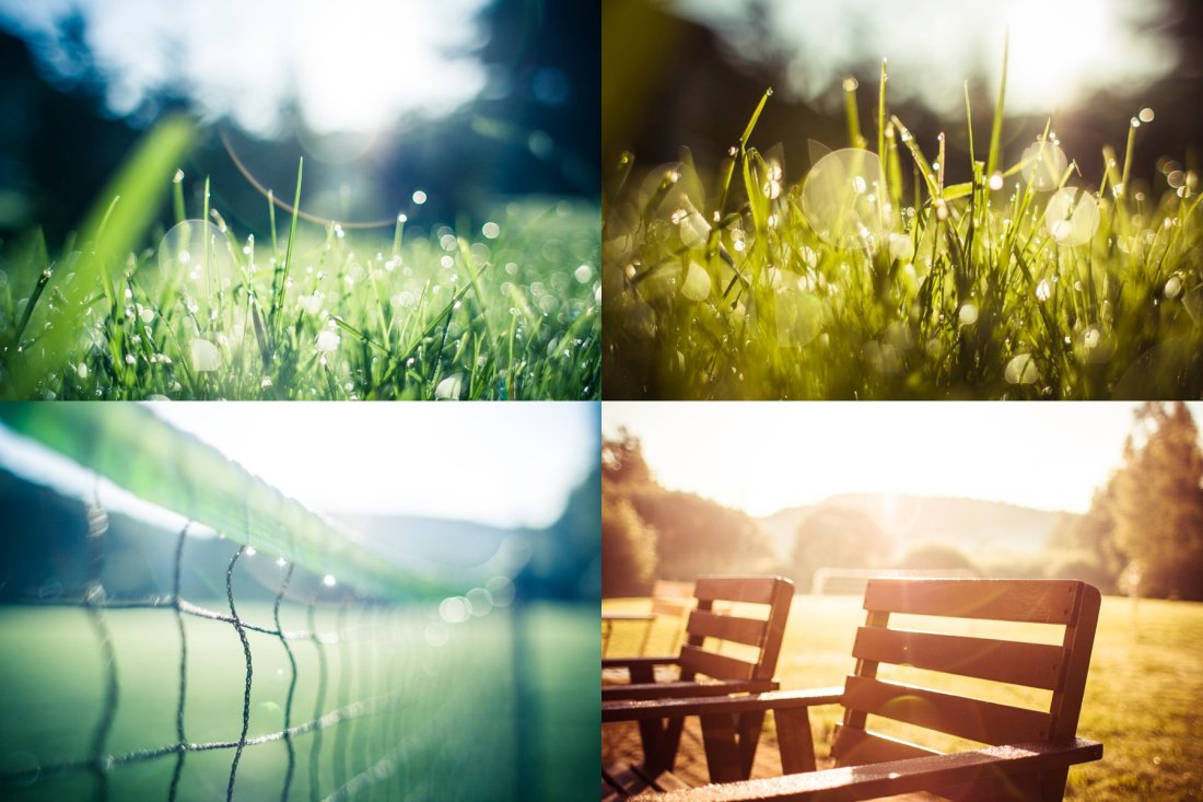 Photo collection preview — Join PREMIUM to download all these images!