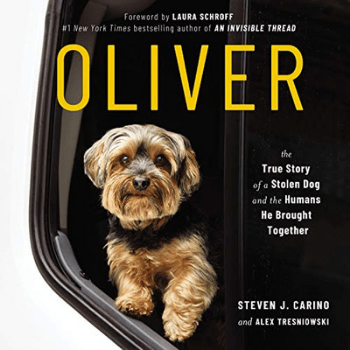 audiobook by Steven Carino