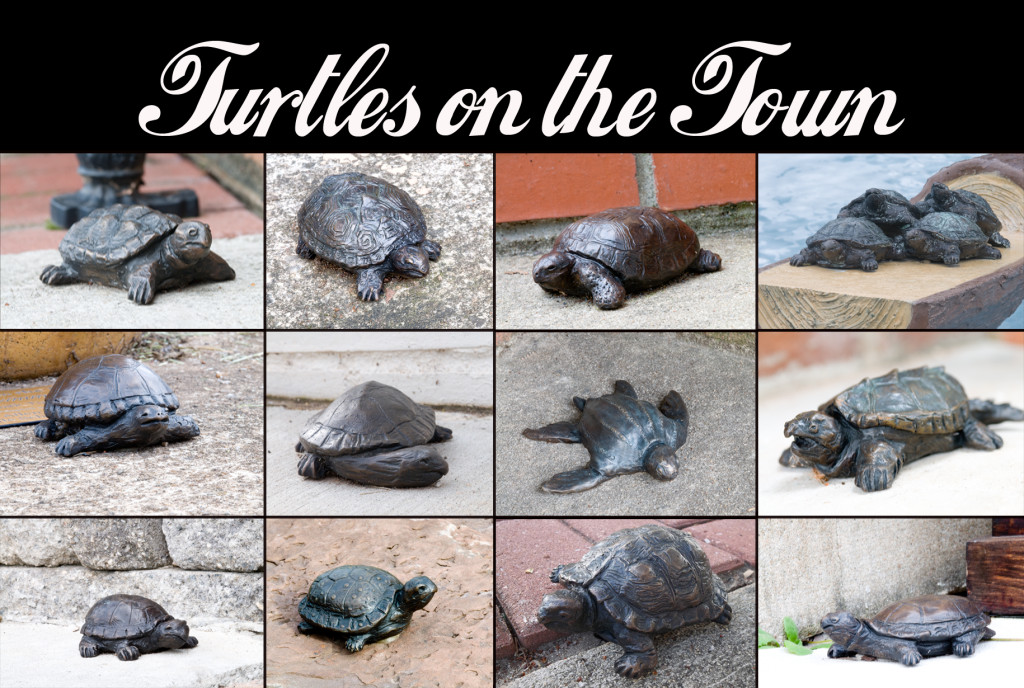 turtles_on_the_town_post_card_front