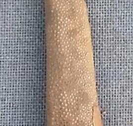 stingrays tail - buntot pagi close up