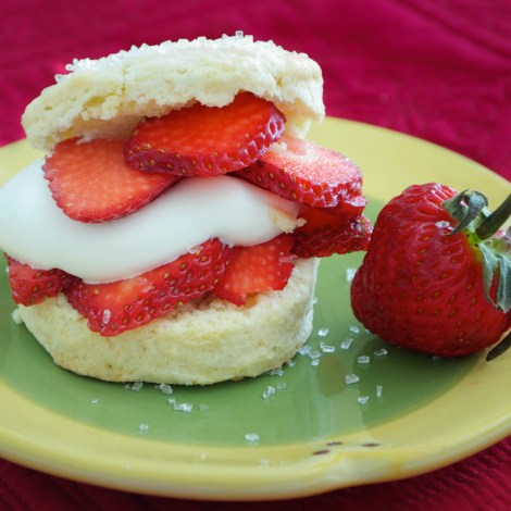 Shortcakes with Strawberries and Cream | Pick Fresh Foods-2
