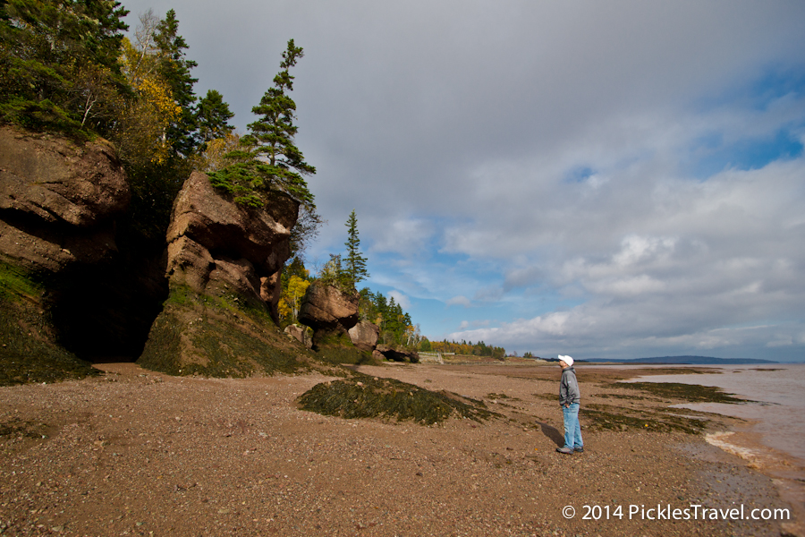 Bay Of Fundy Tide Chart