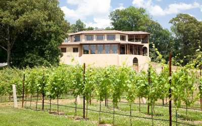 "Dahlonega Receives The ""American Viticultural Area"" (AVA) Designation"